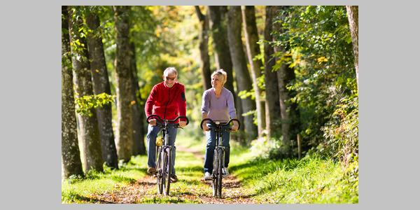 Radfahrer im Friedewald