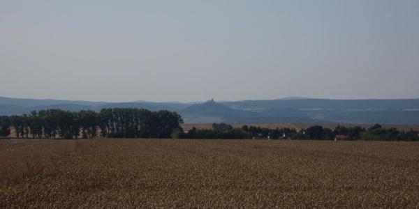 Wachsenburg (Aug. 2013)