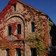 altes Haus mit Herbstlaub