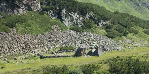 Viehpferch