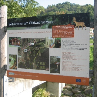 Start Wildwechsel