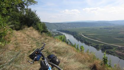 Moselhöhenweg bei Klüsserath (Aug. 2013)
