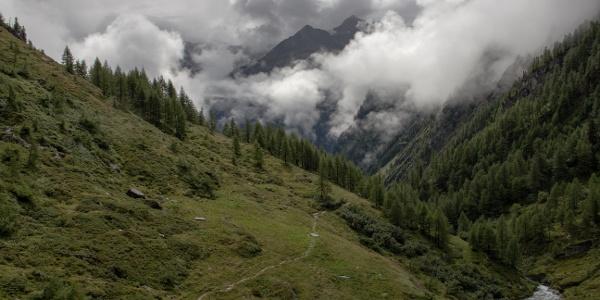 Die Baumgrenze liegt hinter uns, Blick von der Ochsner Htt. ins Tal