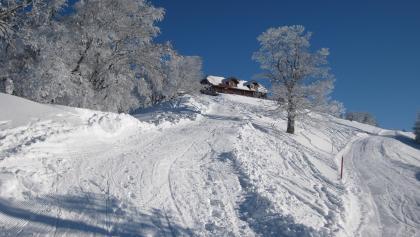 Traisner Hütte mit Gipfelhang von unten