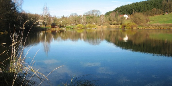 Lainer See