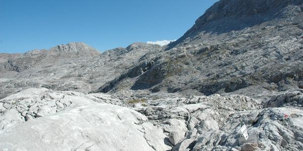 Niederbrunnsulzen mit Felsgrat zum Selbhorn
