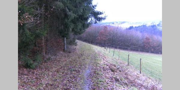Unterwegs im noch breiten Dörsbachtal