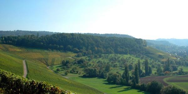 Eschenauer Paradies