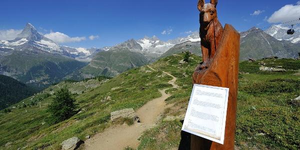 Le long du chemin des marmottes, avec ses différentes sculptures dans le bois