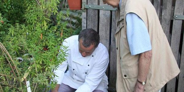 Kräuter für die Bioküche aus dem eigenen Garten