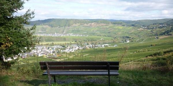 Aussicht aus den Weinbergen auf Leiwen (vorne) und Trittenheim (Hintergrund)