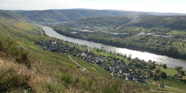 Blick aus den Weinbergen oberhalb von Graach auf Graach und Bernkastel
