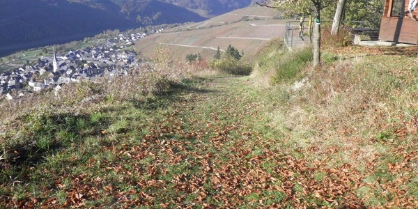 Looking towards Enkirch from the resting place on the Rottenblick