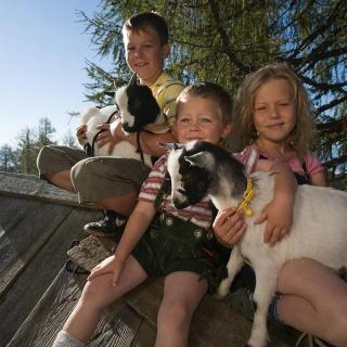 Kinder sitzend auf einer Hütte