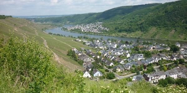 Looking from the Domgarten Lodge to Winningen