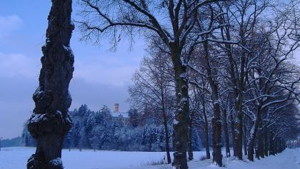Schloss Wellenburg in idyllischer Winterlandschaft