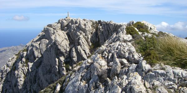 Der Gipfel des Puig Tomir